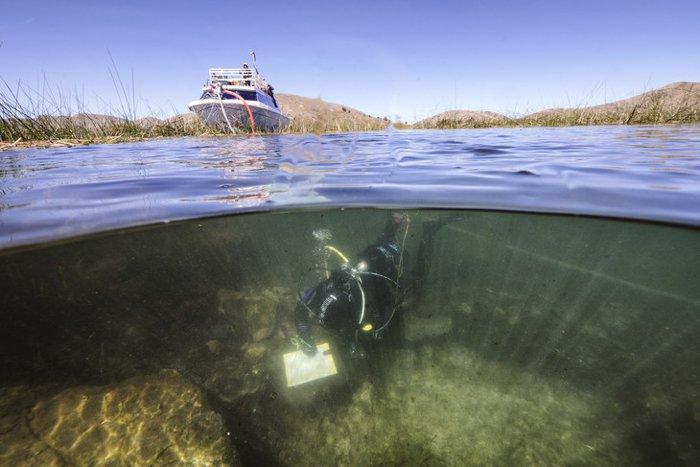 У рифа также были найдены кости водоплавающих птиц.