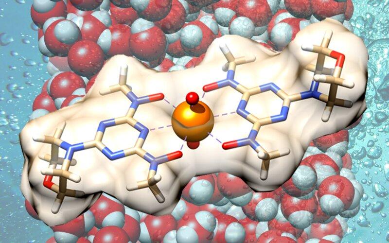 Материал избирательно захватывает ионы уранила и легко высвобождает их.