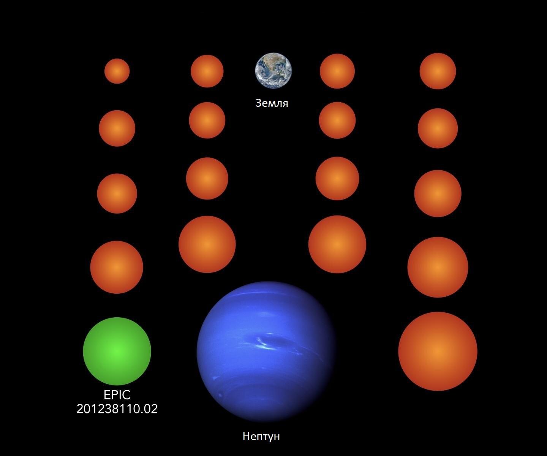 Сравнение размеров новых открытых планет, Земли и Нептуна. Зелёным выделен потенциально обитаемый мир.