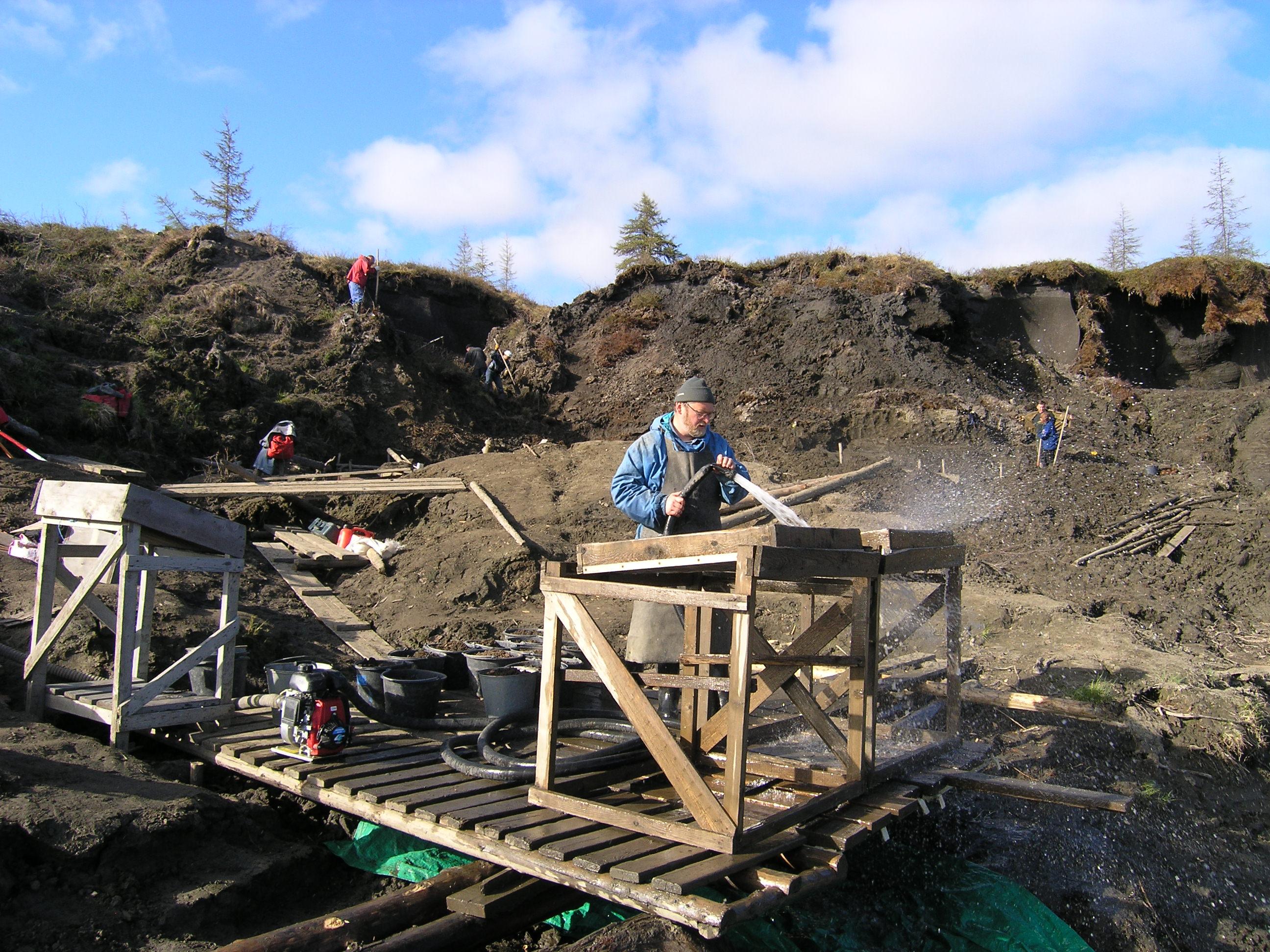 Раскопки на Янской стоянке – древнейшем отпечатке пребывания человека в Арктике.