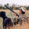 А. Литовченко: человеческая жизнь начиналась с собирательства и охоты