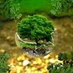 Экология как поле деятельности маркетологов