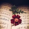 Русский композитор, автор романсов Петр Булахов