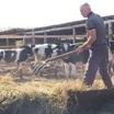 Как развивается фермерский бизнес в  России