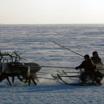Самоеды – самый северный народ Евразии