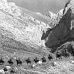 Конный поход посвятили 75-летию Победы