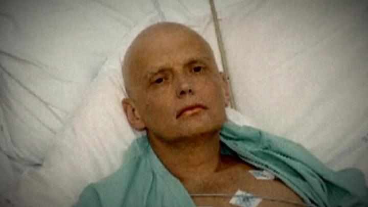 Вдове Литвиненко присудили компенсацию в 100 тысяч евро