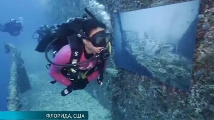 Фотограф Андреас Франке превратил искусственный риф в подводную галерею