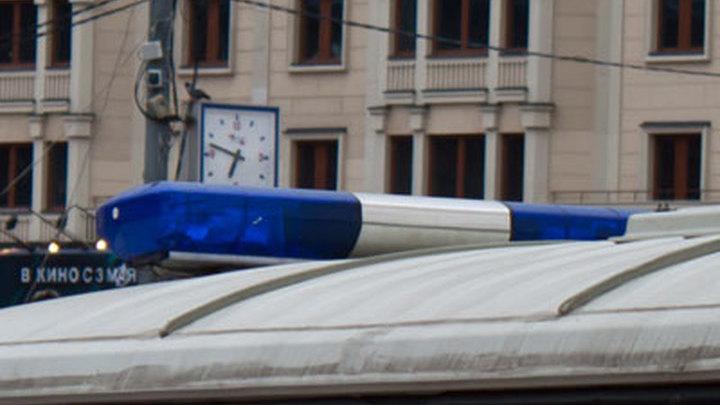 Полиция расследует обстоятельства нападения в Битцевском парке