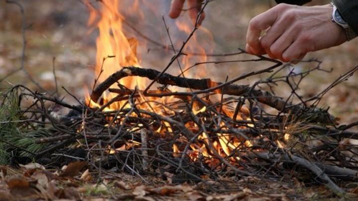 Совет безопасности обсуждает правонарушения в природопользовании
