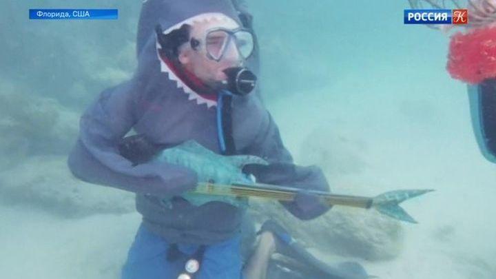 В штате Флорида прошел Подводный музыкальный фестиваль