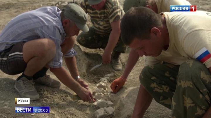 Скелет древнего кита, найденный в Крыму, стал сенсацией в научном мире