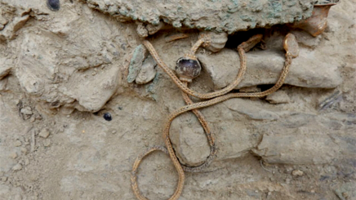 Золотое ожерелье около 75 сантиметров в длину √ одна из драгоценностей, найденных в могиле воина