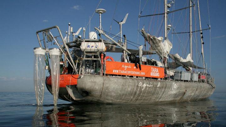 """Шхуна """"Тара"""" с оборудованием для отбора проб планктона"""