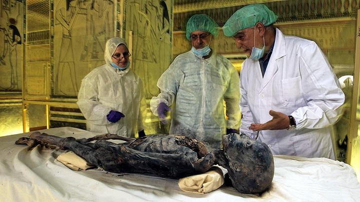 Извлечение генетического материала из мумии в гробнице KV35
