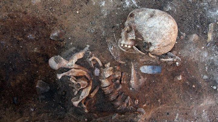 Скелет из Гросс Фреденвальде