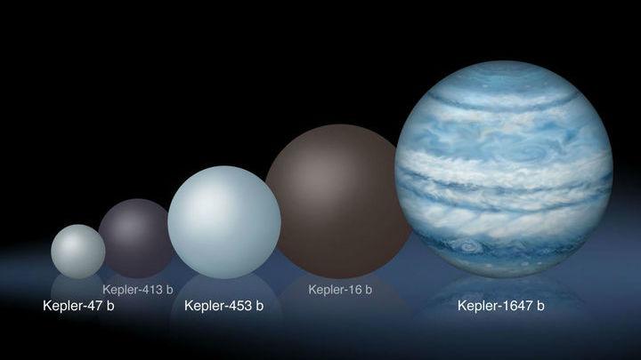 Сравнение нескольких экзопланет, которые вращаются сразу вокруг двух звёзд.