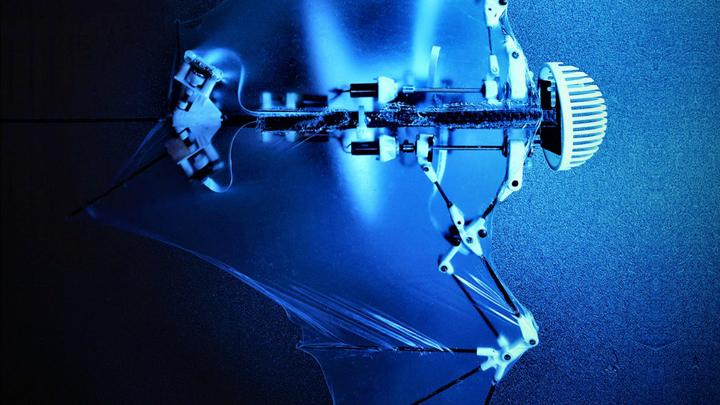На каждом суставе крыла робота установлен сенсор, который регистрирует его положение. Детекторы имитируют чувствительные клетки в коже крыльев летучих мышей.