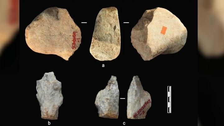 Всего обнаружено 96 артефактов.