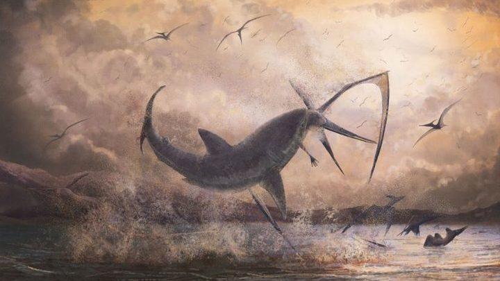 Палеонтологи изучили уникальный экземпляр: останки птеранодона, убитого акулой.