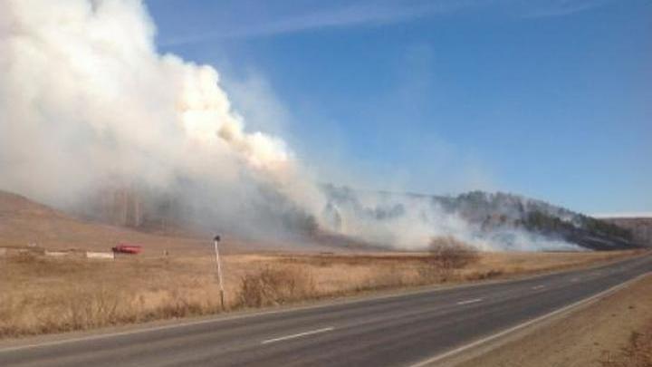 Омск накрыл смог из-за горящей сухой травы и леса на площади 10 гектаров