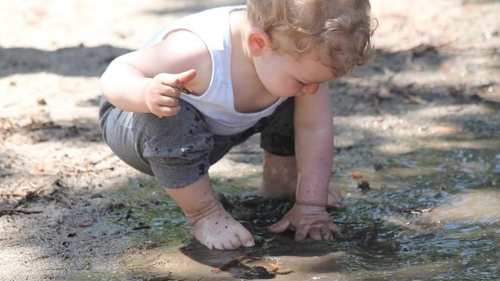 """В почве и окружающей среде содержится множество полезных микробов – """"старых друзей"""" человека, которые помогают укрепить наш иммунитет."""
