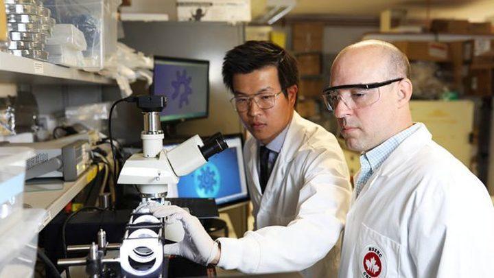 Новый метод позволяет манипулировать отдельными клетками быстрее и эффективнее.