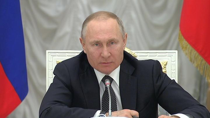 Путин: внесено около 900 предложений по поправкам в Конституцию