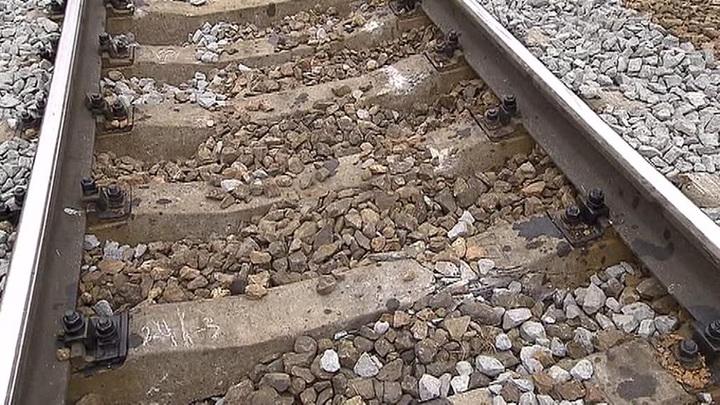 Минстрой изучает возможность ввоза трудовых мигрантов чартерными поездами