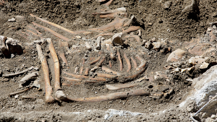 На территории предприятия Роскосмоса нашли человеческие останки