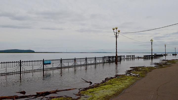 Пик паводка у Комсомольска-на-Амуре ожидается 2-4 сентября