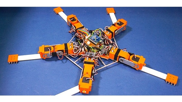 """Новый робот-""""морская звезда"""" может двигаться дальше, даже потеряв конечность"""