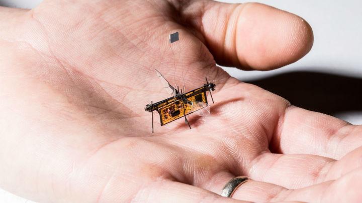 Инженеры создали первого робота-муху с питанием от лазерного луча