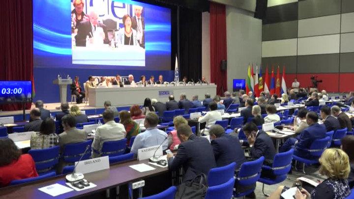 Российская делегация покинула заседание ОБСЕ в знак протеста