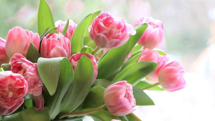 8 марта: виртуальные и реальные поздравительные акции