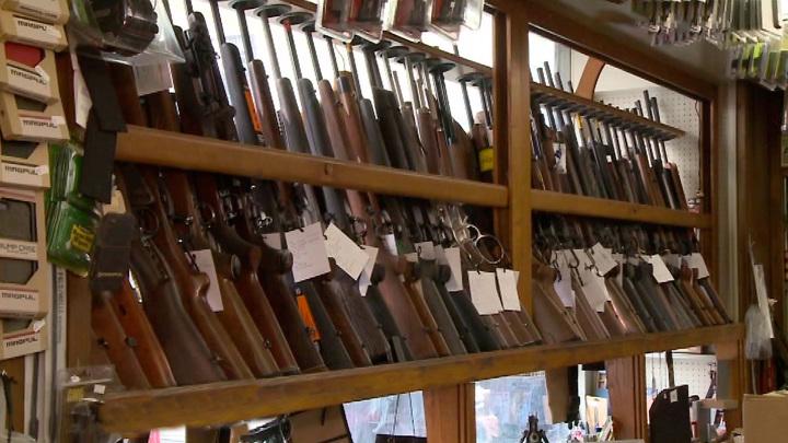 Москалькова предложила повысить возраст владения оружием
