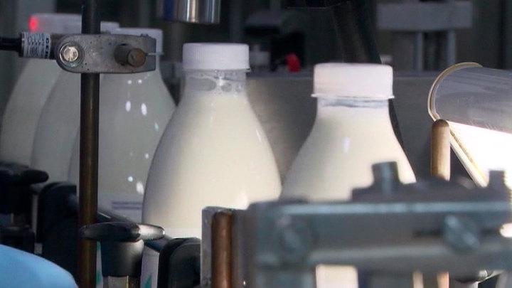 ВШЭ: введение маркировки замедлило рост цен на молочную продукцию