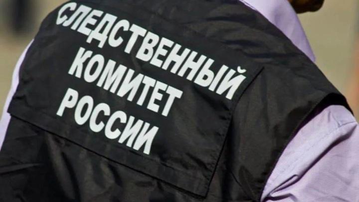 В Тамбове квартирант до смерти избил хозяина квартиры