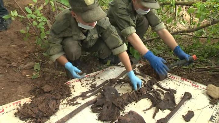Под Ростовом нашли останки солдат, погибших в 1941-м