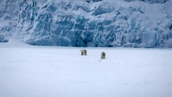 Россияне станут обладателями участков в Арктике