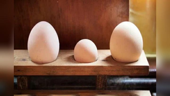 Минсельхоз исключил дефицит яиц
