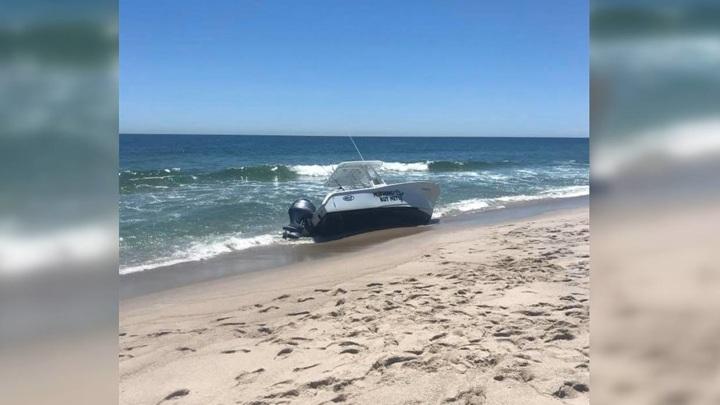 Кит опрокинул лодку с людьми в Нью-Джерси