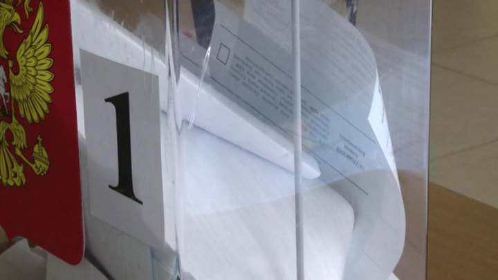 Почти половина россиян выступает за трехдневное голосование