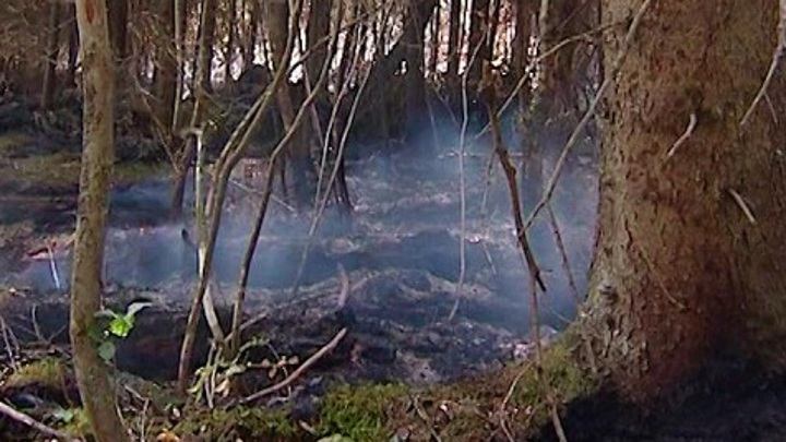 Около 10 строений горят в селеМечётка в Воронежской области