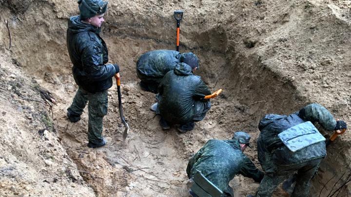 СКР: в Псковской области обнаружены останки 188 человек, убитых фашистами