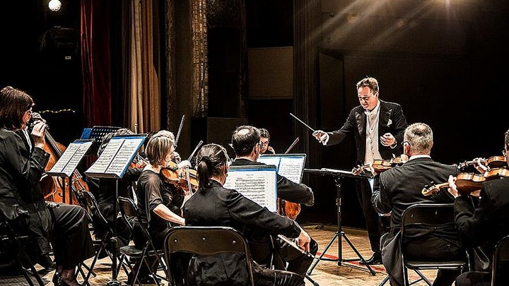 Венский филармонический оркестр выступит в Японии