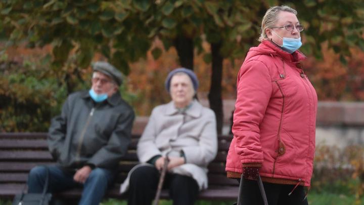 Пожилым жителям Подмосковья заблокируют социальные карты