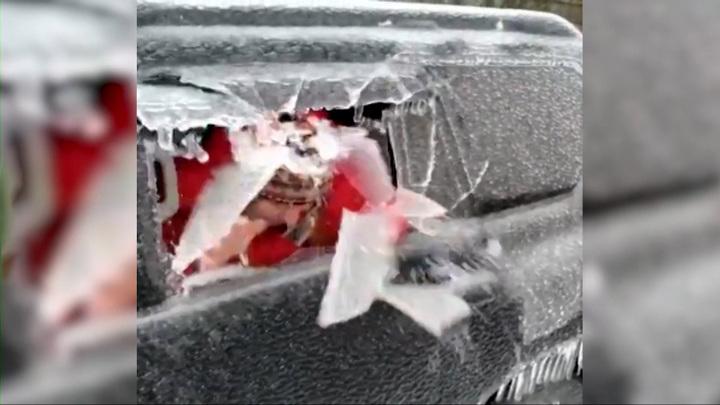 """""""Вот так машины чистим сегодня"""": приморский депутат головой сбивает лед с авто"""