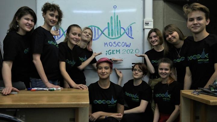 Команда Moscow получила золотую медаль на конкурсе iGEM 2020.