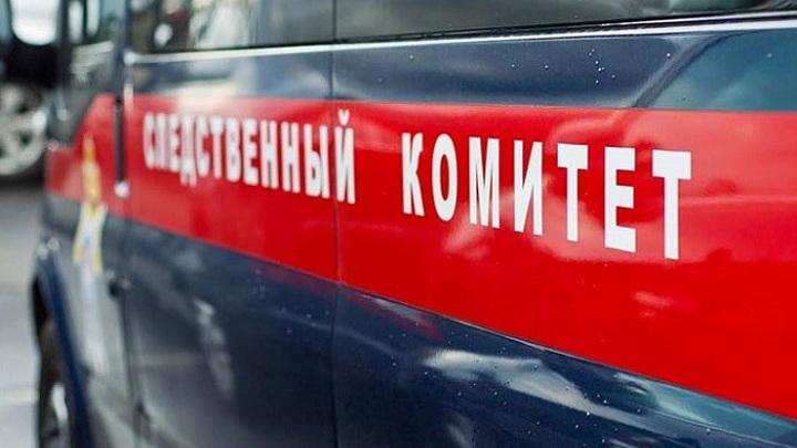 На Ямале пьяная женщина вызвала полицейских и избила их